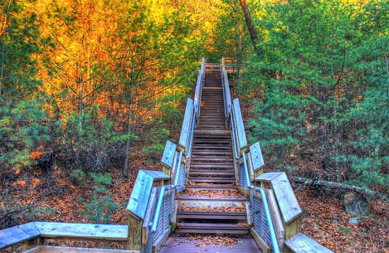 Colorful staircase in nature could be going up or might be going down