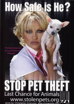 Blond woman holding up small white dog with Stop Pet Theft across the bottom of the photo