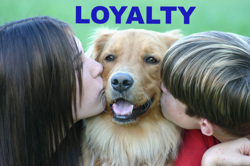 LOYALTY: Girl and boy kissing dog