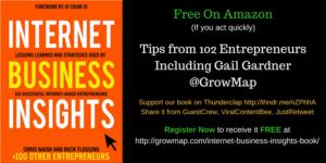 Free On Amazon IBI Internet Business Insights Book