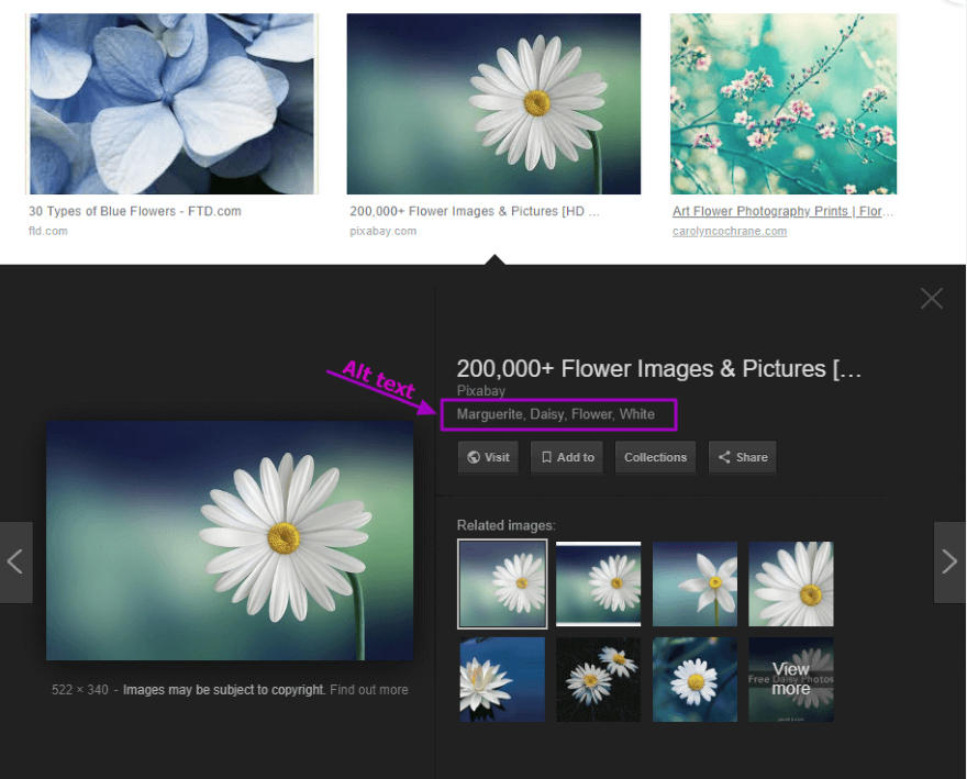 alt image search results