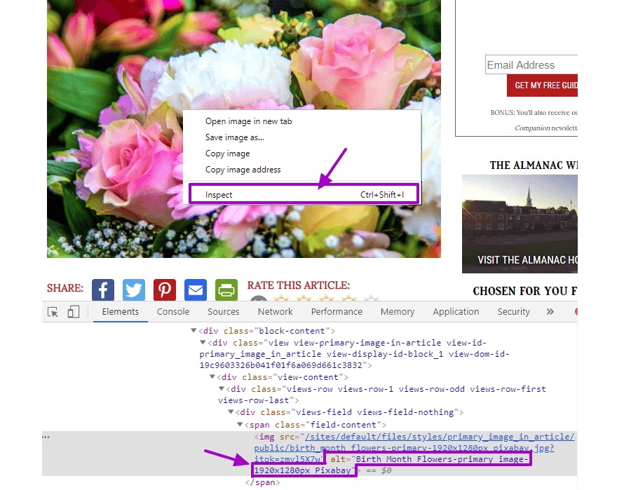 Use inspect source code to view alt image text