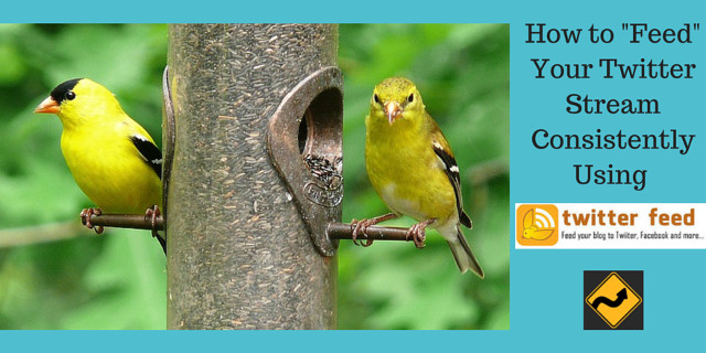 Bright yellow birds eating at a pole feeder symbolizing feeding your Twitter bird