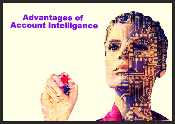 Digtal person: Advantages of Account Intelligence