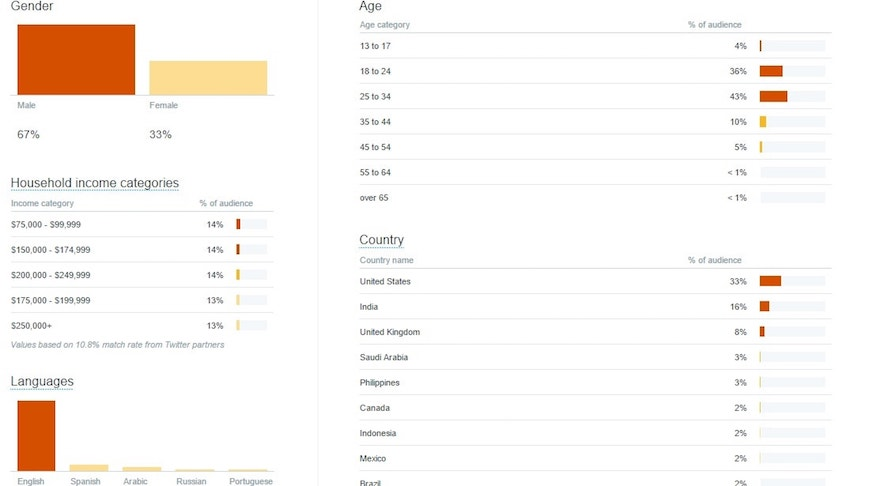 Twitter audience demographics