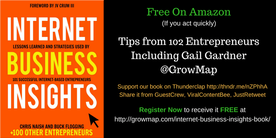 Internet Business Insights Book: FREE Success Tips from 102 Entrepreneurs