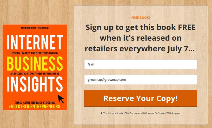 FREE IBI-Internet-Business-Insights-Book
