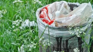 5 Green Questions to Ask Your Rubbish Removal Company
